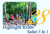 Hilight Krabi Safari 3 In 1