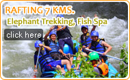 Rafting 7 KM Elephant Trekking and Flying Fox