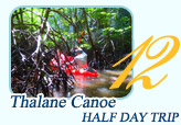 Thalane Canoe Half Day Tour