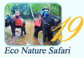 Eco Nature Safari