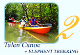 Canoeing and Elephant Trekking by JC Tour